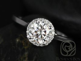 Rosados Box Amerie 6.5mm 14kt White Gold Round F1- Moissanite and Diamonds Halo Engagement Ring