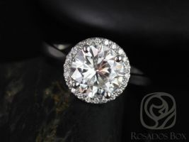 Rosados Box Shannon 8.50mm 14kt White Gold Round F1- Moissanite and Diamonds Extra Low Halo Engagement Ring