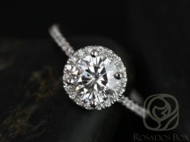 Rosados Box Kimberly 6.5mm 14kt White Gold Round F1- Moissanite and Diamonds Halo Engagement Ring