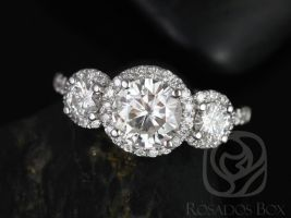 Rosados Box Dita 7mm 14kt White Gold Round F1- Moissanite and Diamonds 3 Stone Halo Engagement Ring