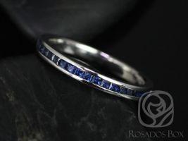 Rosados Box Judy 14kt White Gold Princess Blue Sapphire Channel Set HALFWAY Eternity Band