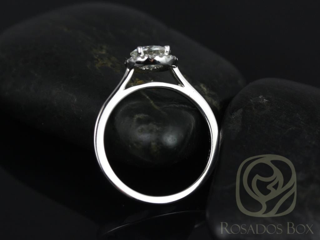 https://www.loveandpromisejewelers.com/media/catalog/product/cache/feefdef027ccf0d59dd1fef51db0610e/a/m/amerie_6.50mm_14kt_white_gold_round_fb_moissanite_and_diamonds_halo_engagement_ring_other_metals_and_stone_options_available_2wm.jpg