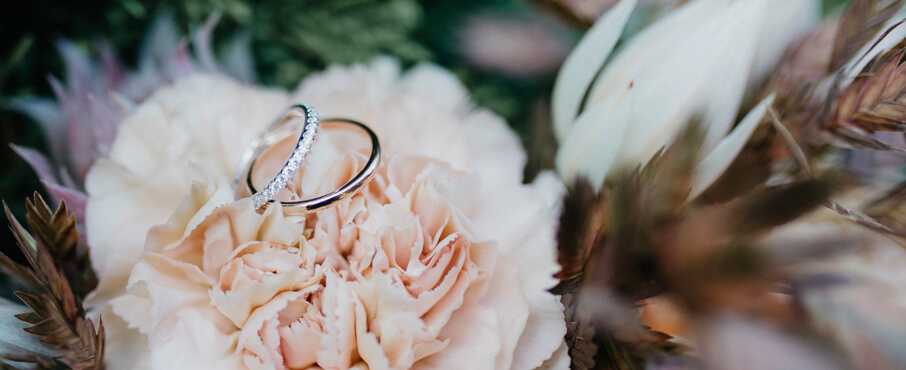 Contact us - Two wedding bands resting on top of a pink rose | Love & Promise Jewelers